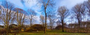 A day out in... Bartlow Hills, Roman burial mounds 20 minutes from Stambourne