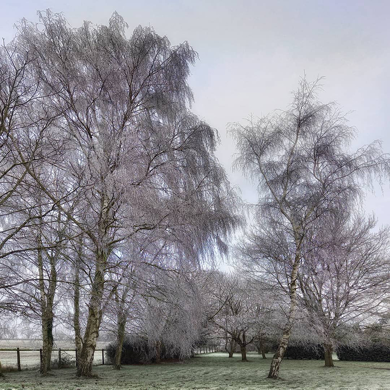 First snow of the season, Stambourne - Winter 2021
