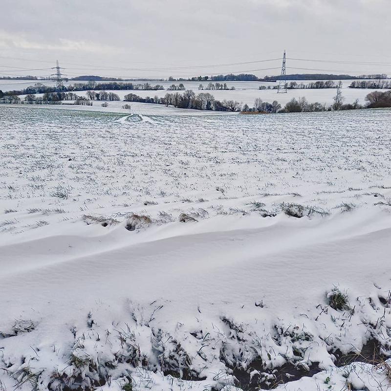 Small snowdrift, Gainsford End - Winter 2021